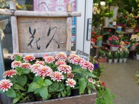 フラワーギフト 花久 勝川本店